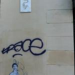Sirena Audouinia by AJT (2)