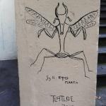 Equus Mantis by Tlatloc