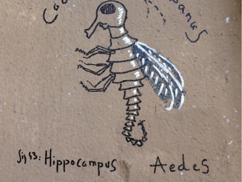 Hippcampus Ædes by Tlatloc
