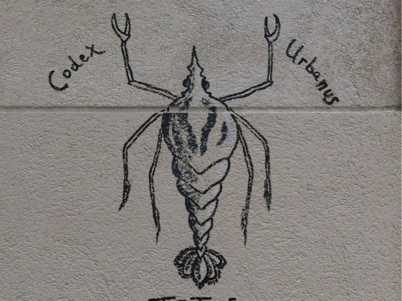 Ixodida Montmartrensis