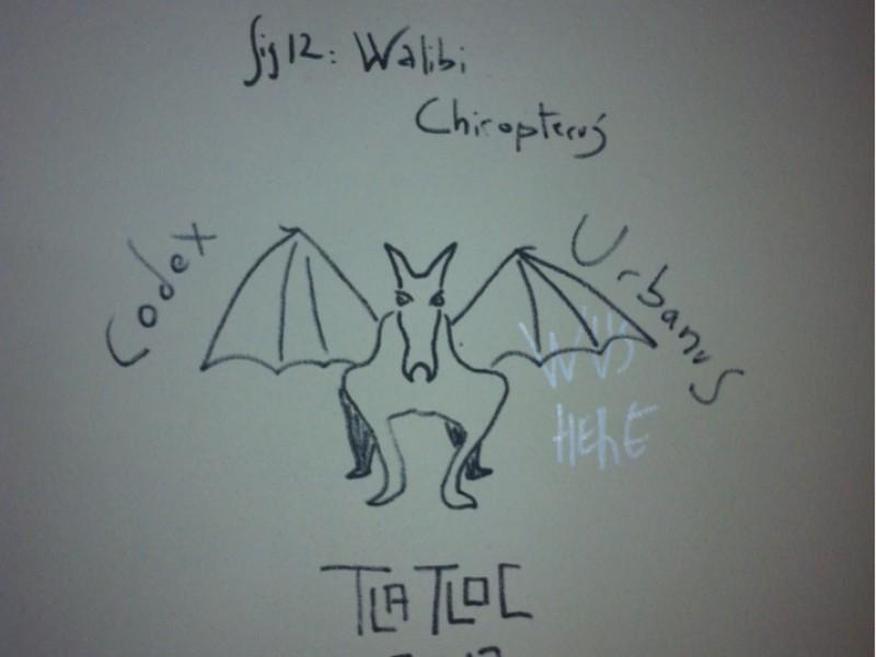 Walibi Chiropterus by Tlatloc