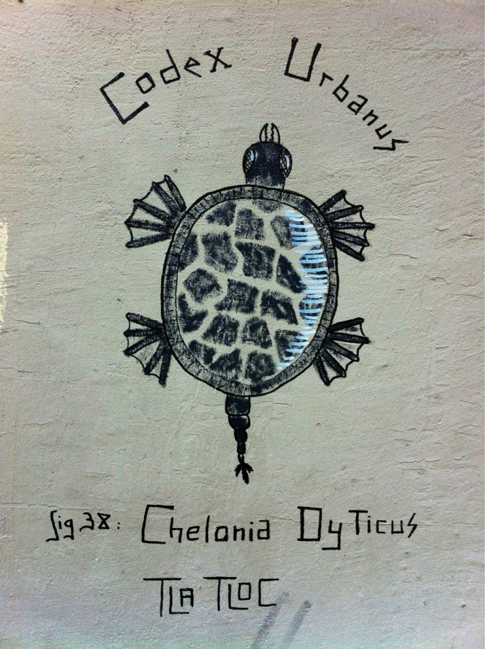 Chelonia Dyticus by Tlatloc