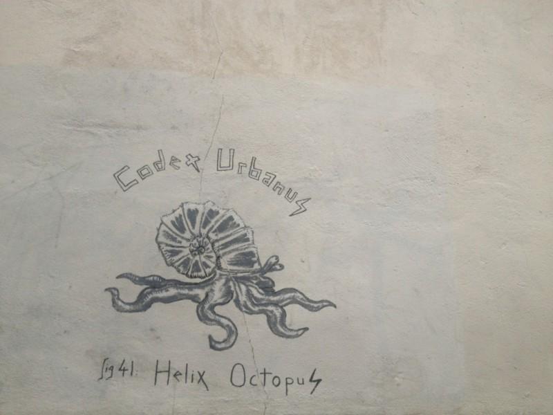 Helix Octopus, rue Antoine