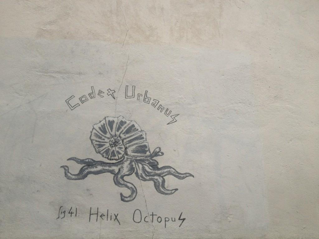 Helix Octopus