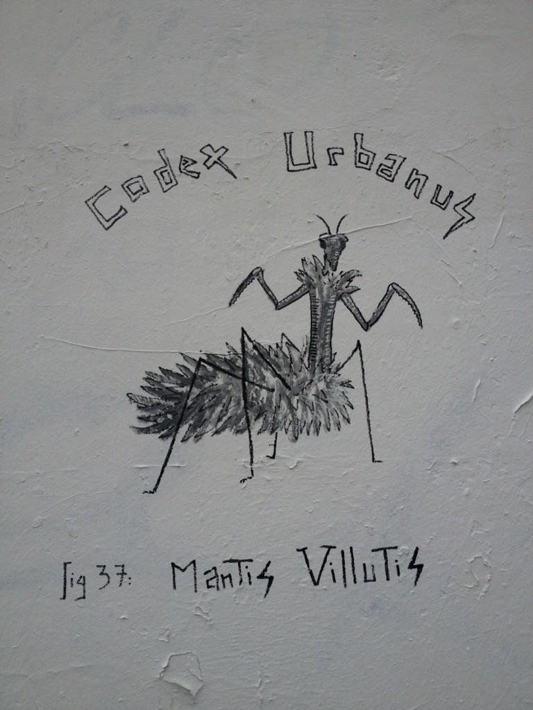 Mantis Villutis (2)
