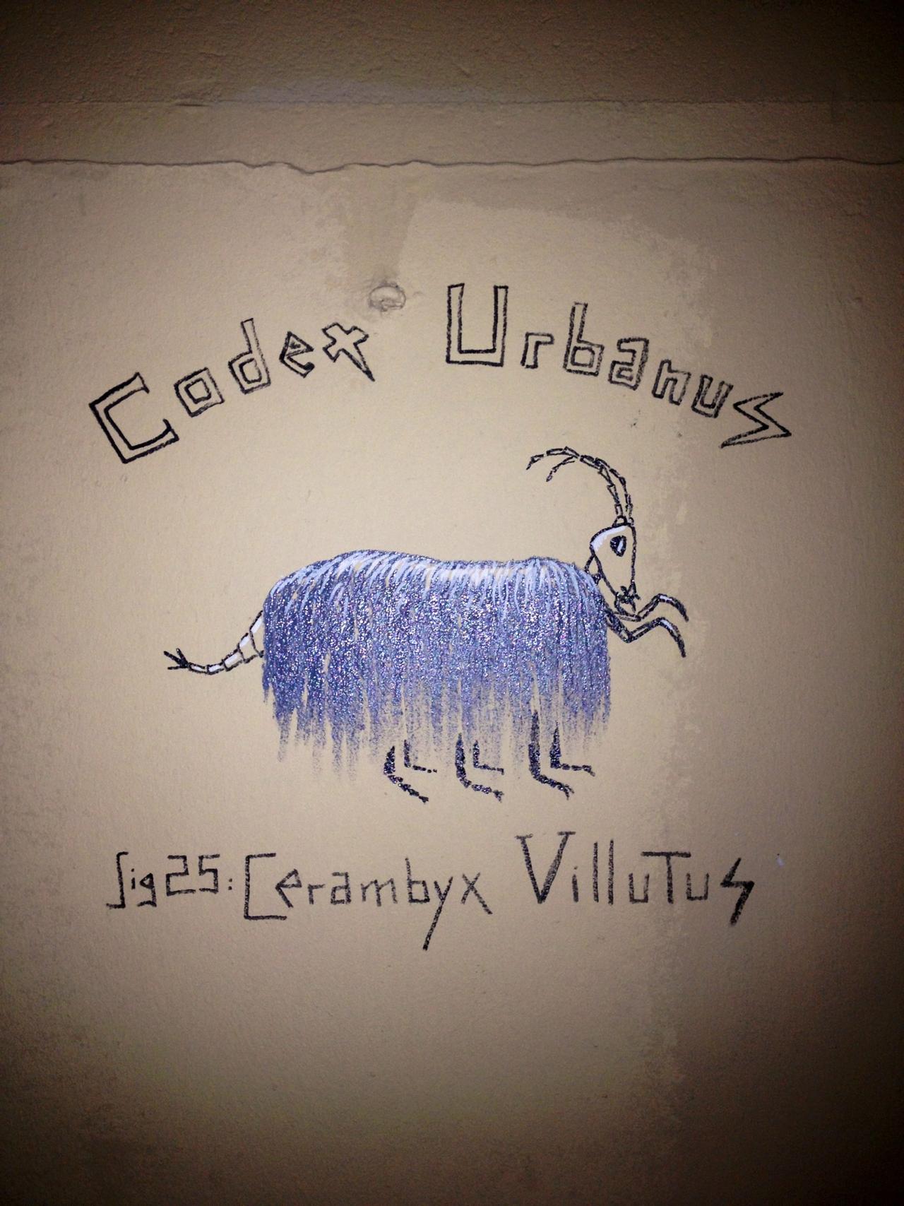 The new Cerambyx Villutis