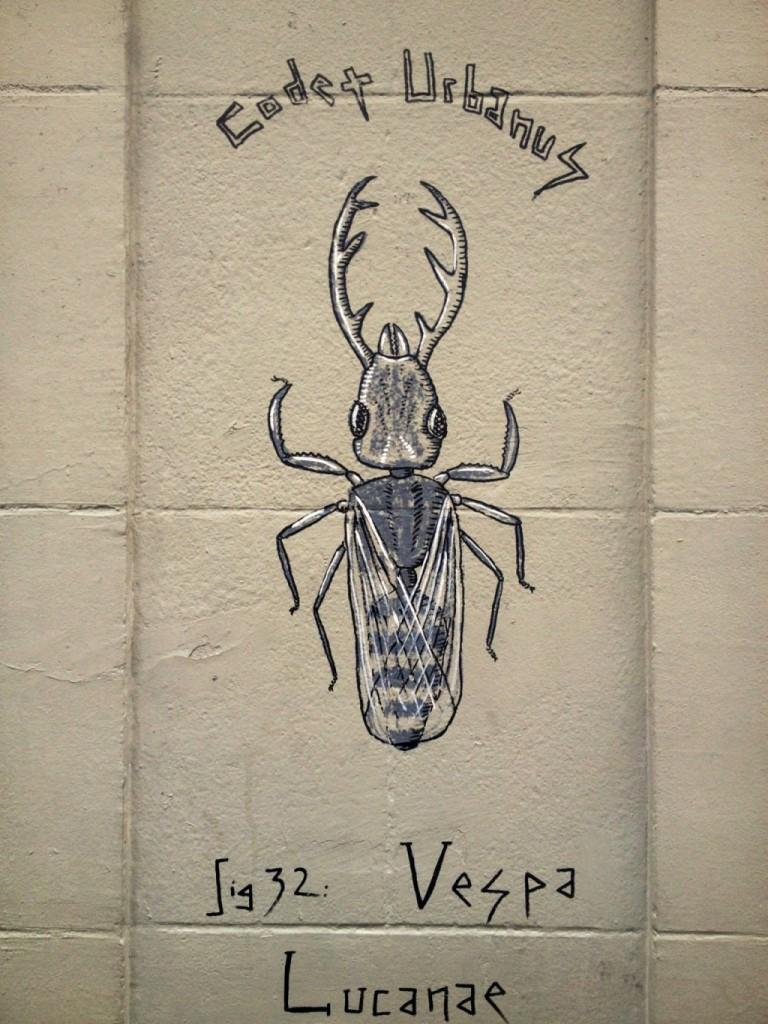 Vespa Lucanae