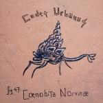 Cœnobita Norvinæ