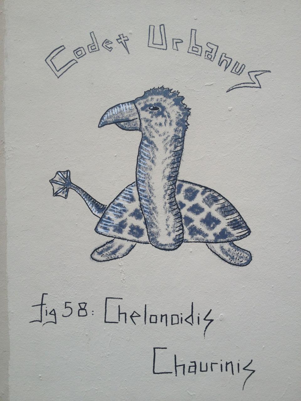 Cheloniidis Chaurinis