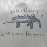 Latimeria Pachydermia