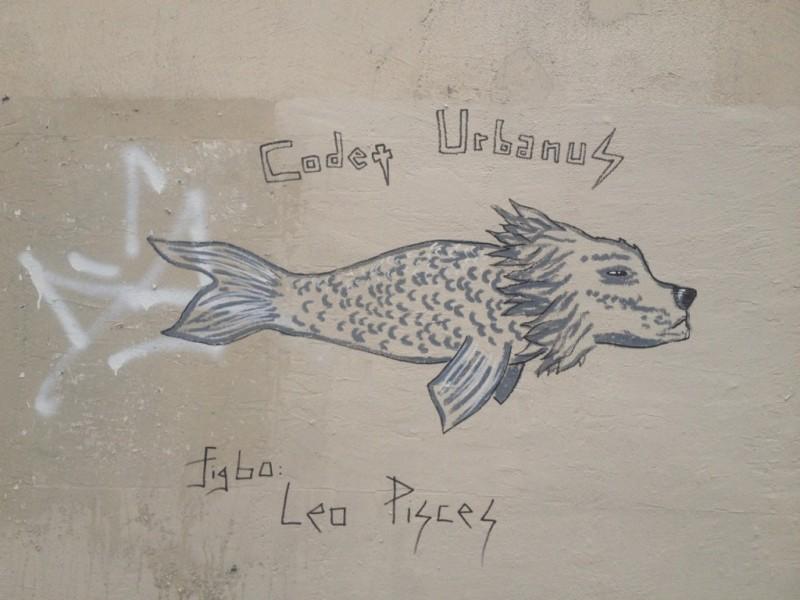 Leo Pisces