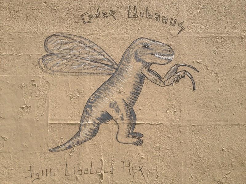 Libelula Rex