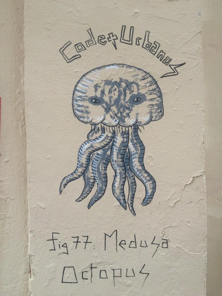 Medusa Octopus