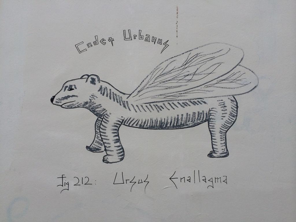 Ursus Enallagma (2)