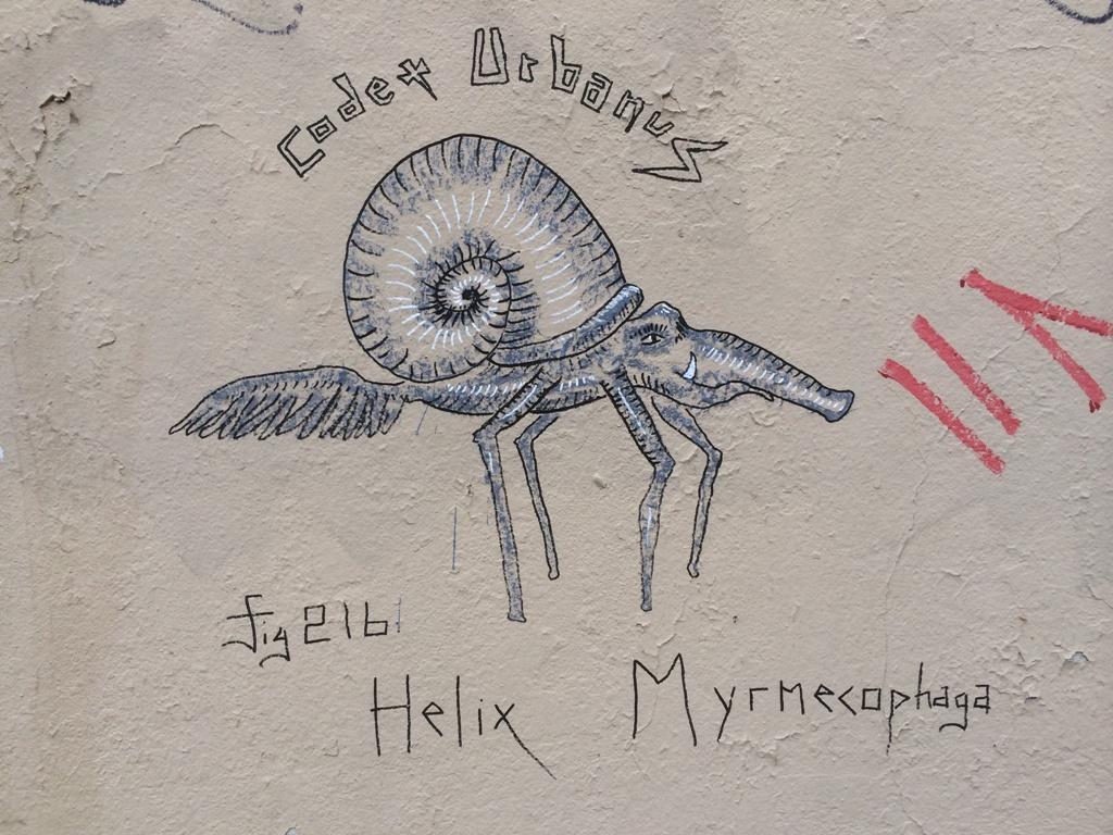 Helix Myrmecophaga (2)