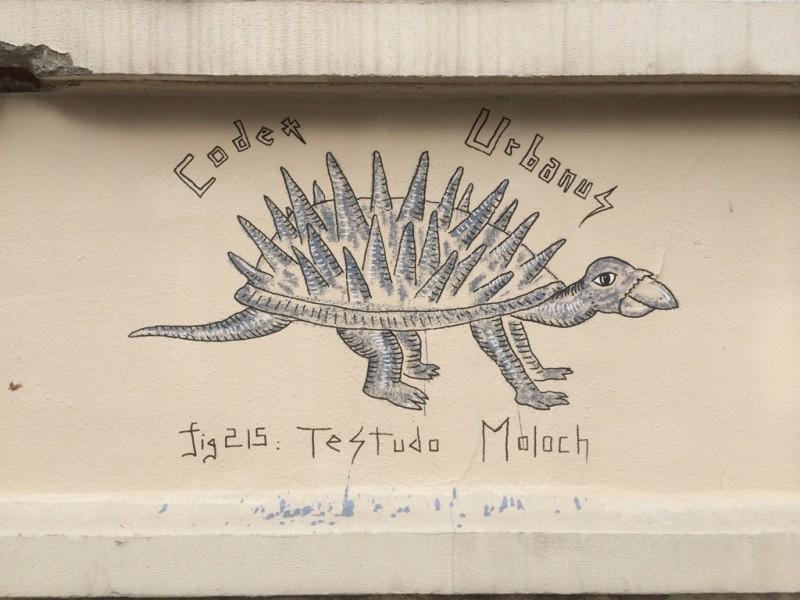 Testudo Moloch, Spike turtle