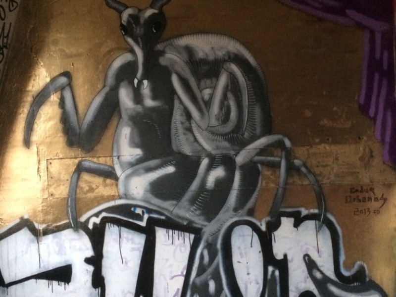 Graffiti and Creature, Weird Insect