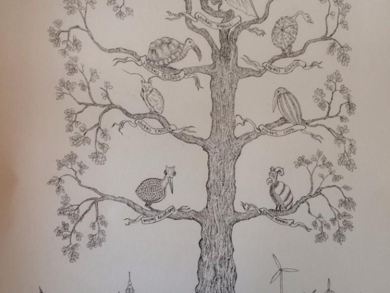 Concert d'Oiseaux