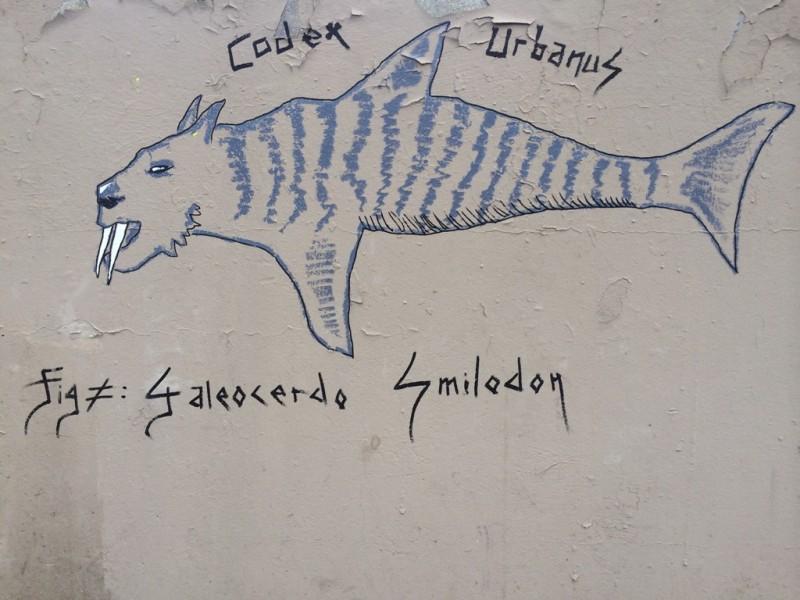 Galeocerdo Smilodon, Requin-Tigre