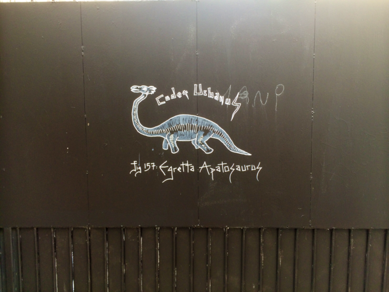 Egretta Apatosaurus