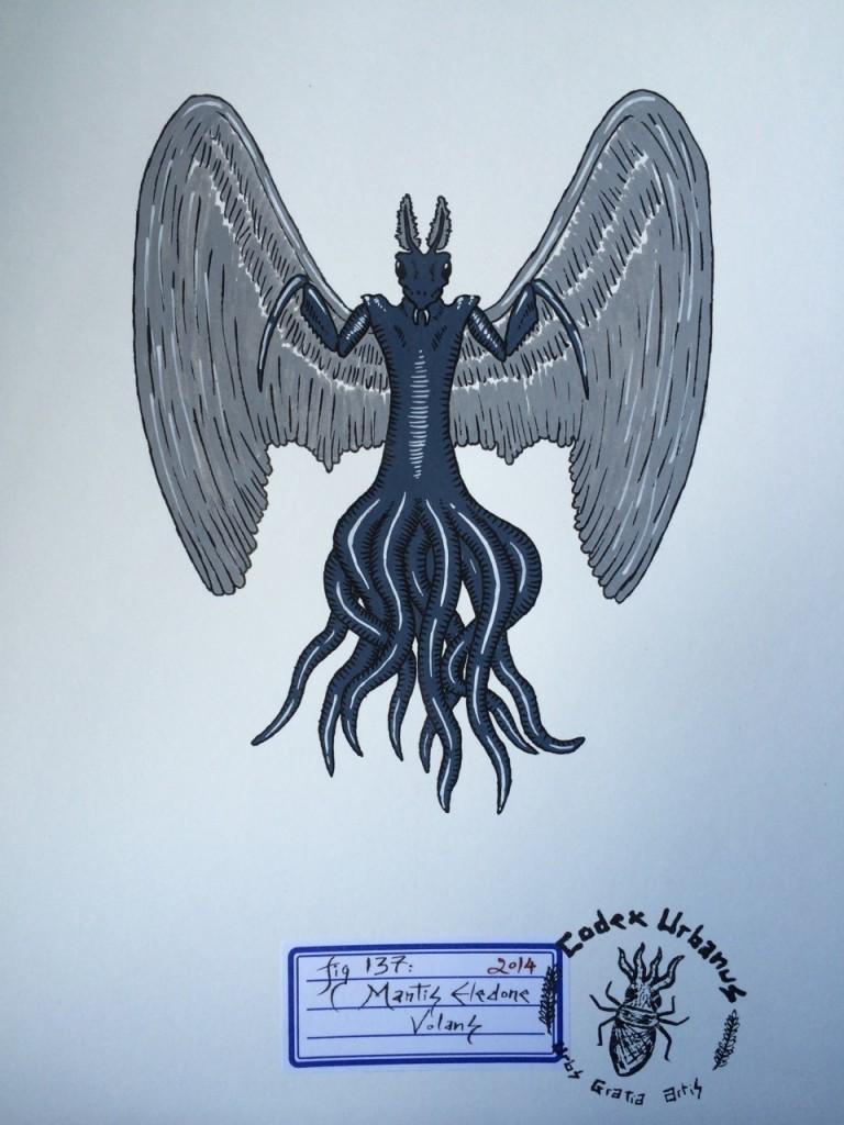 Mantis Eledone Volans