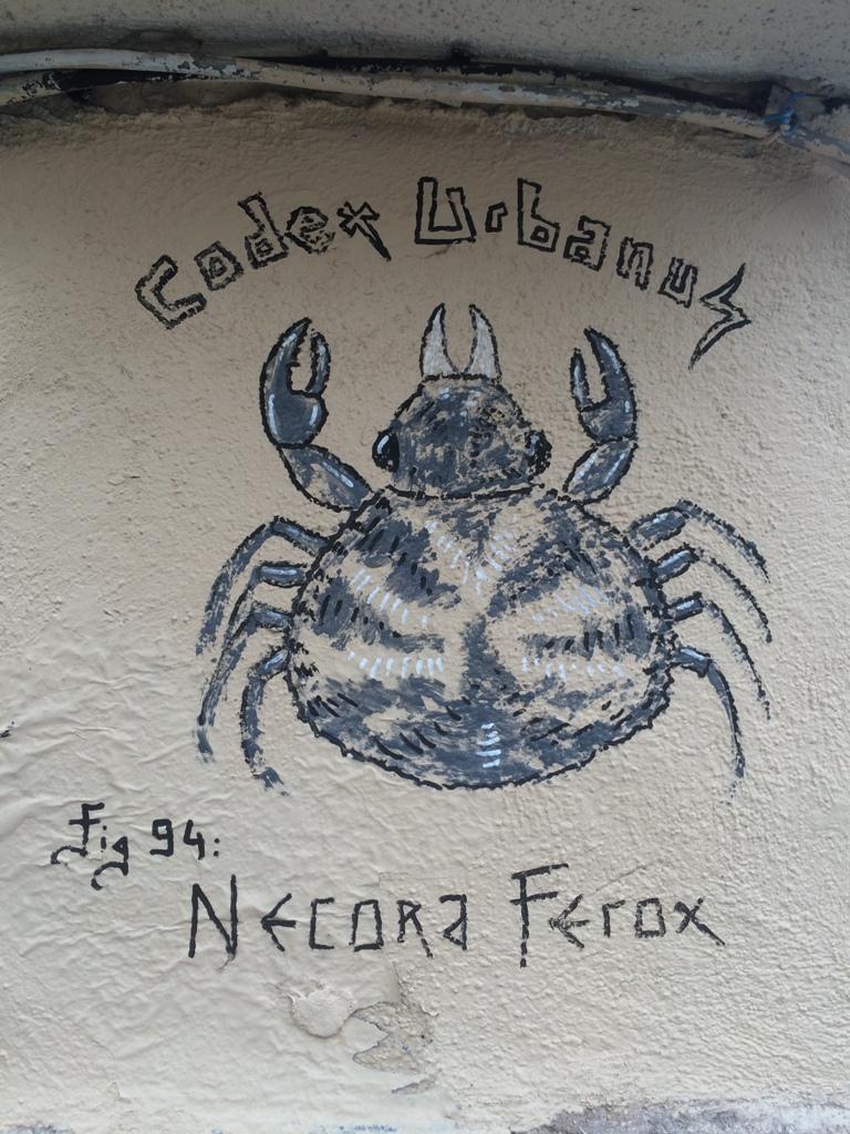 Necora Ferox