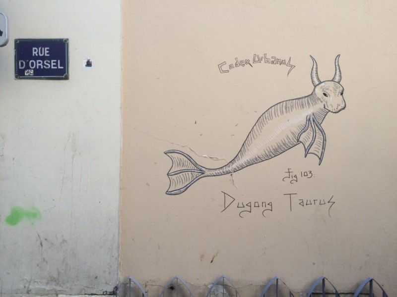 Dugong Taurus