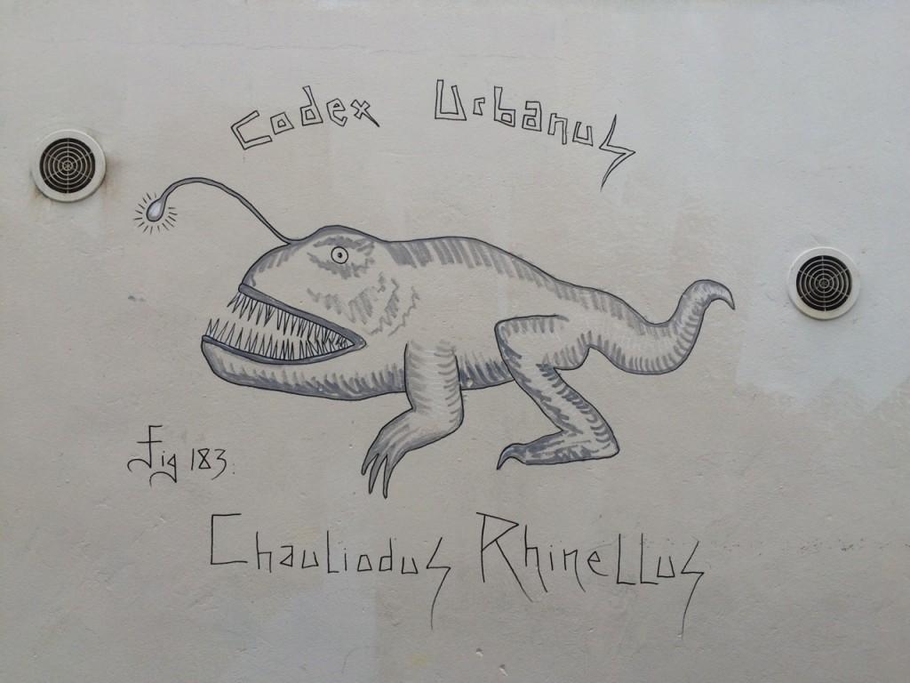 Chauliodus Rhinellus