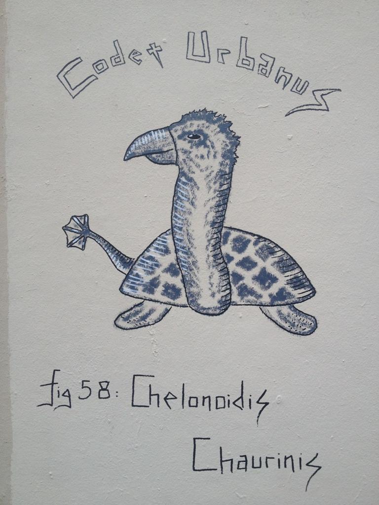 Chelonoidis Chaurinis