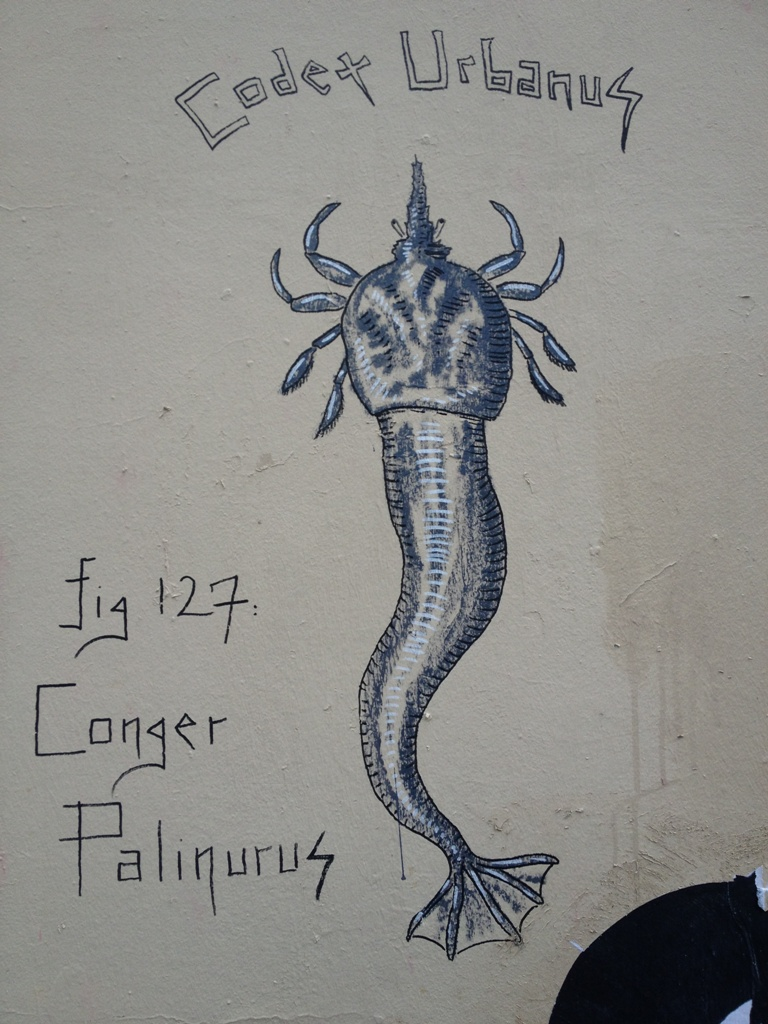 Cogger Palinurus