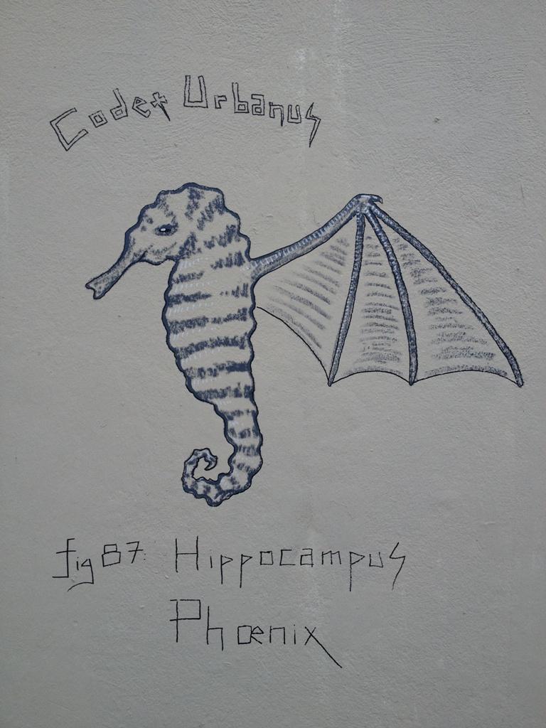 Hippocampus Phoenix