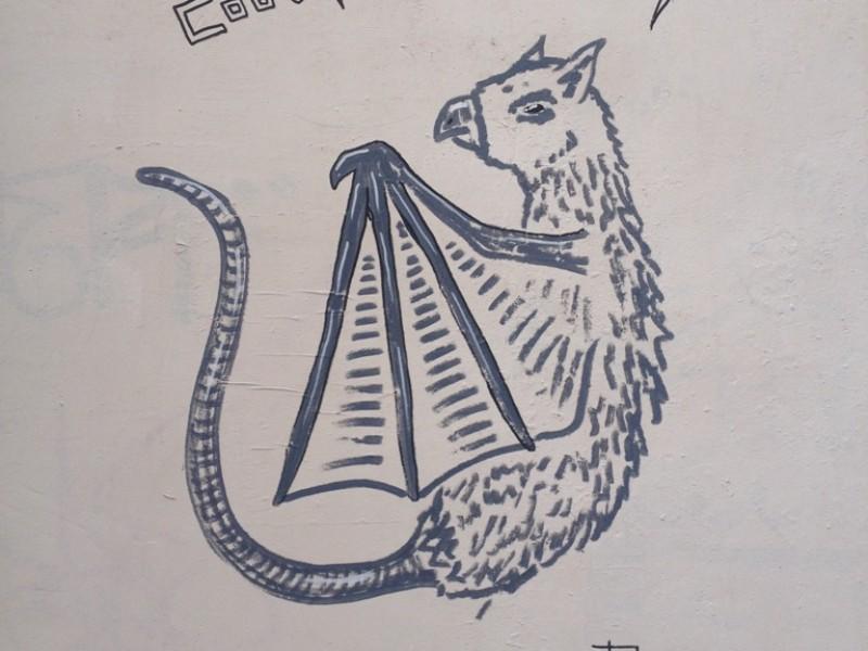 Pipistrellus Draco
