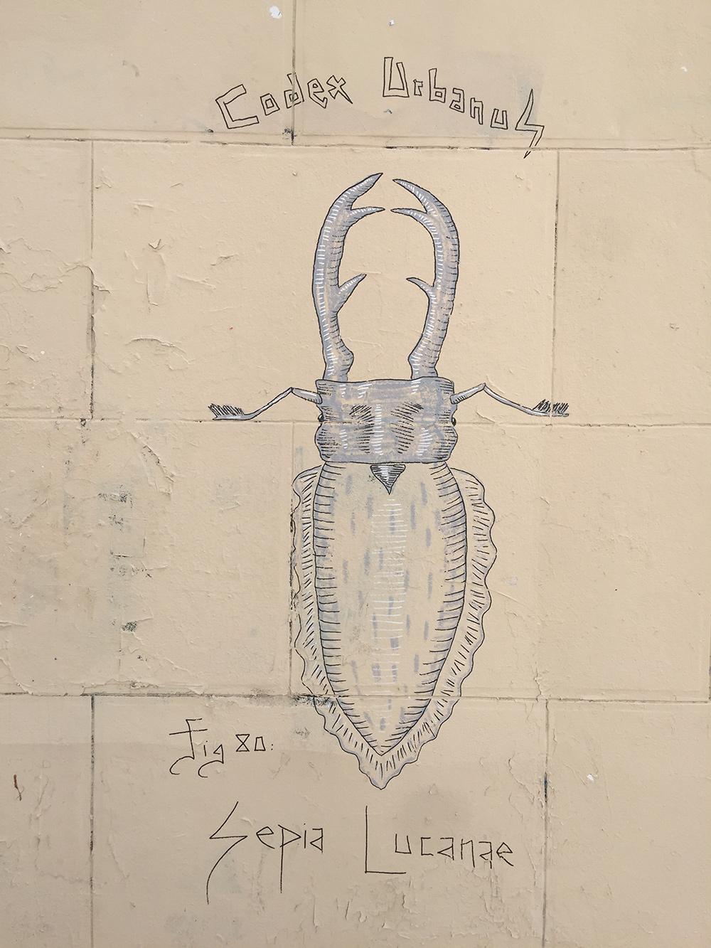 Codex Urbanus, Sepia Lucanæ, rue Chappe, Montmartre Street Art